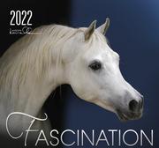 Fascination 2022