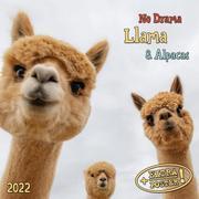No Drama Llama & Alpacas2022