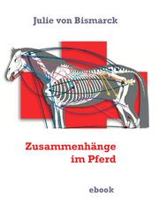 Zusammenhänge im Pferd