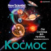 New Scientist '' Space. From the Sun to the borders of the unknown