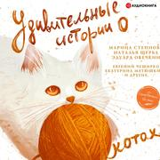 Amazing stories about cats