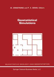 Geostatistical Simulations